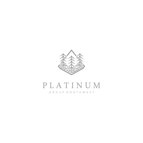 Platinum Group Development Logo Design