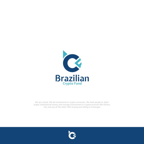 Brazilian Crypto Fund
