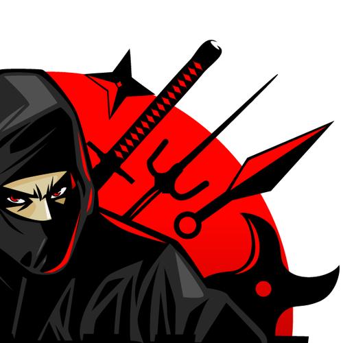 Needed: a killer logo for AllNinjaGear