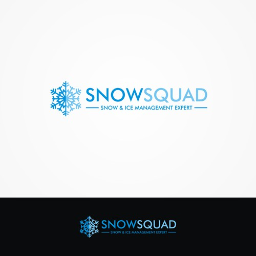 A Simple Snow Removal Expert Logo