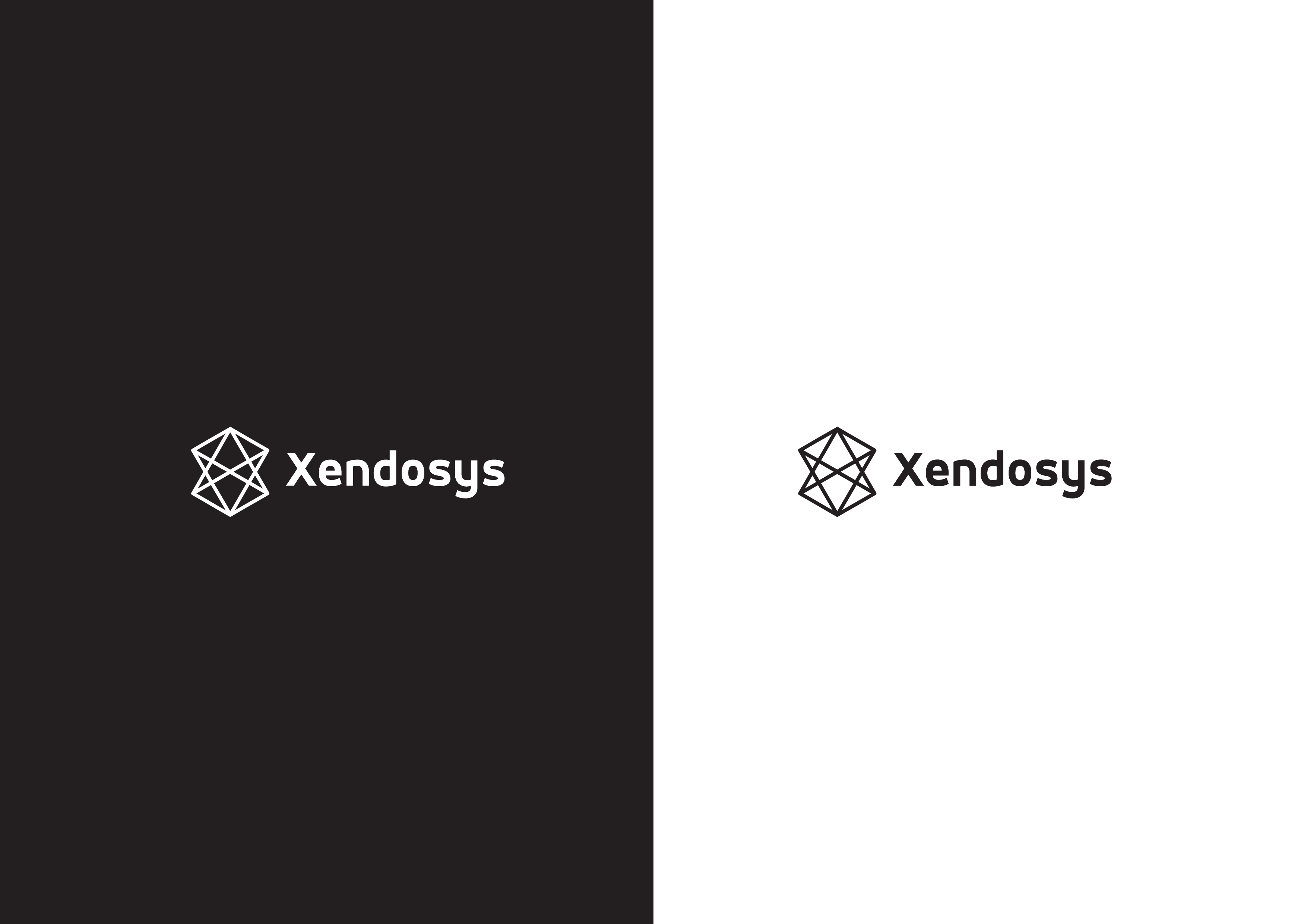 Xendosys needs a powerful new logo.