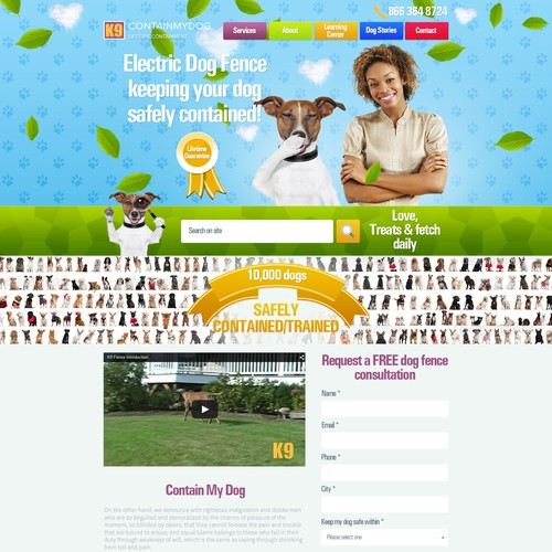 Friendly website for electric dog fence company.
