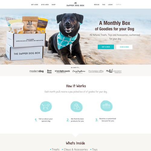 Homepage for an Upscale Startup Pet Subscription Company