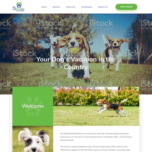 Web Design for a Unique activity-based dog care facility
