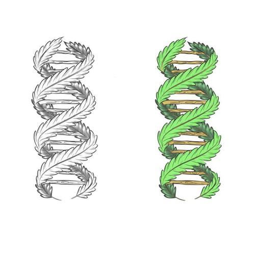 Cannabis DNA.