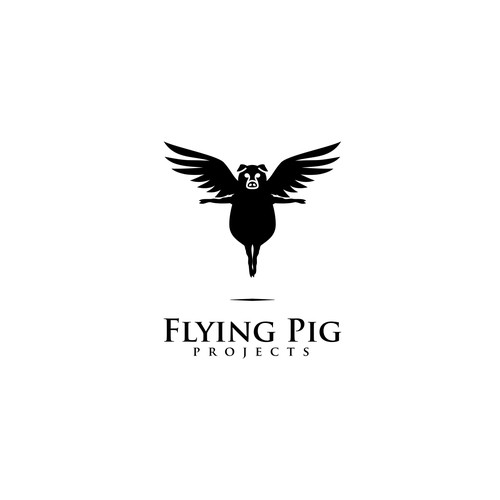 Flying Pig Projects