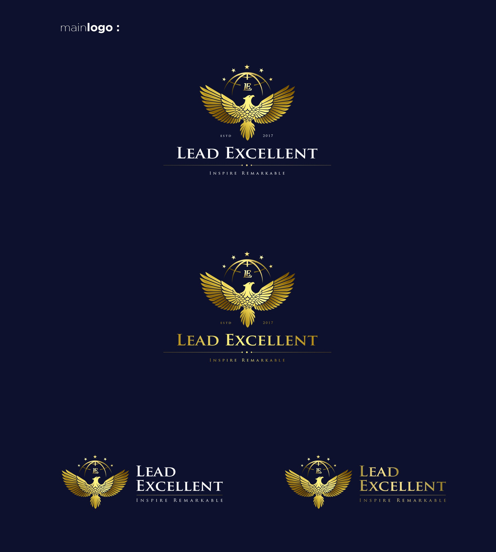 "High-End Design For a New ""Leadership Excellence"" Brand"