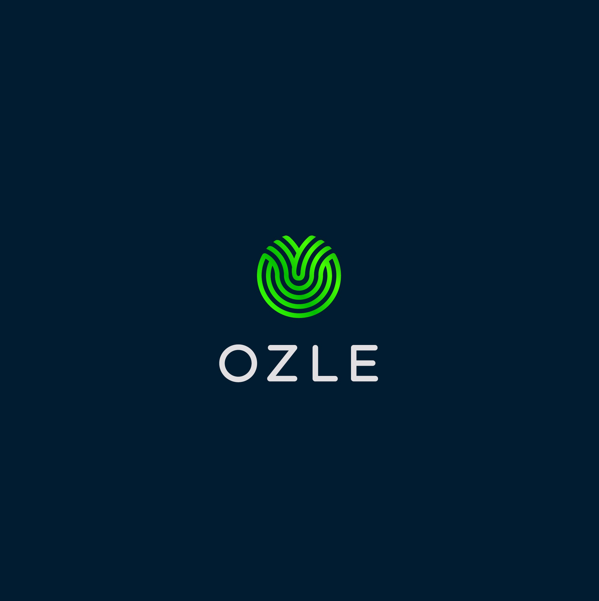 Logo for Web Development and Digital Marketing Company