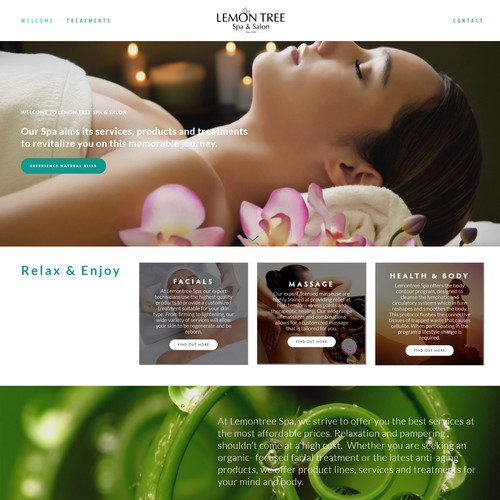 Lemon Tree Day Spa Design
