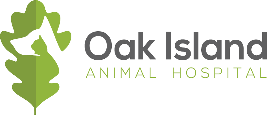 Professional & Fun Logo for an Animal Hospital
