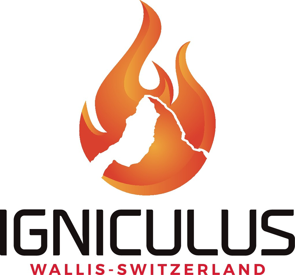 """Create a eye catching logo for """"Igniculus"""" the contagious, refreshing, empowering life training!"""