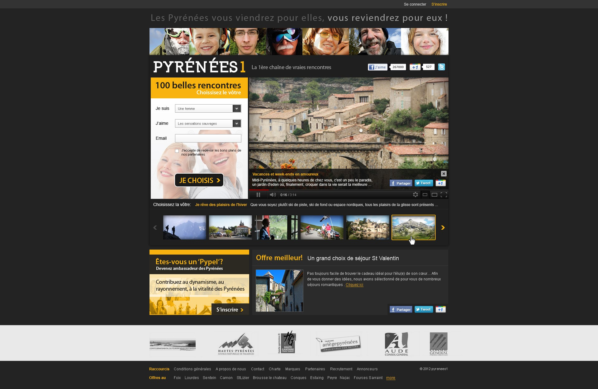 Help Pyrenees 1 with a new website design