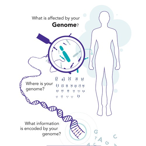 Your Genome