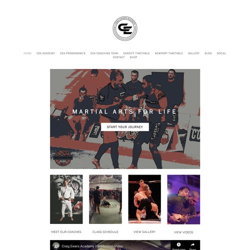 Web Design & Strategy for MMA Gym