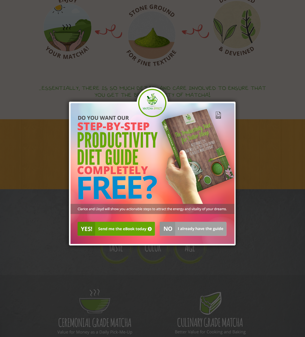 Design and develop remaining pages for Matcha Effect
