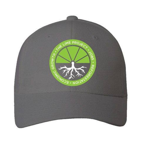 Help Haiti with Jobs, Reforestation, and Economic Growth - Lime Project