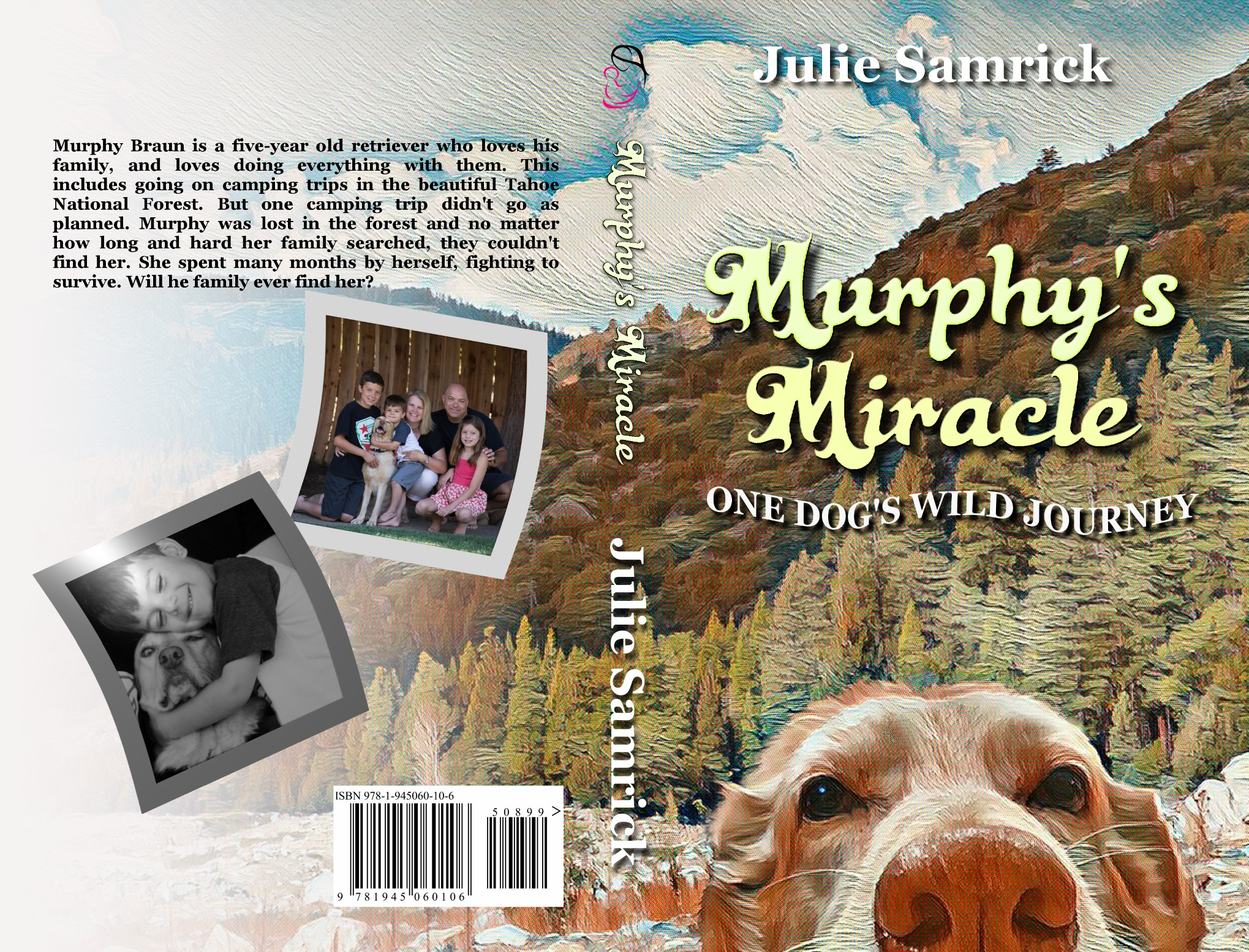 Book Cover for Murphy's Miracle - A Lost Dog Story