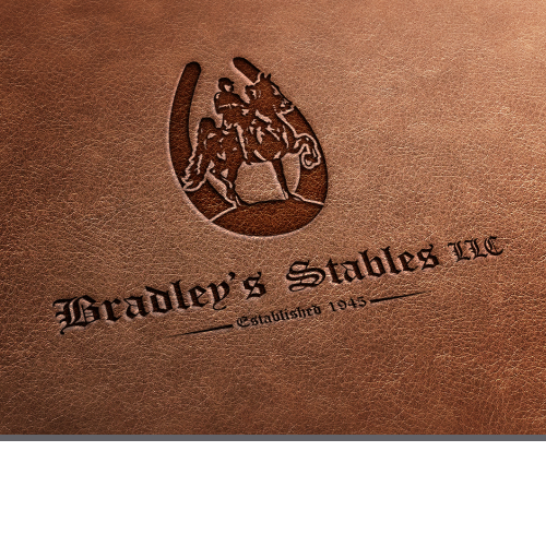 Established horse business needs logo update