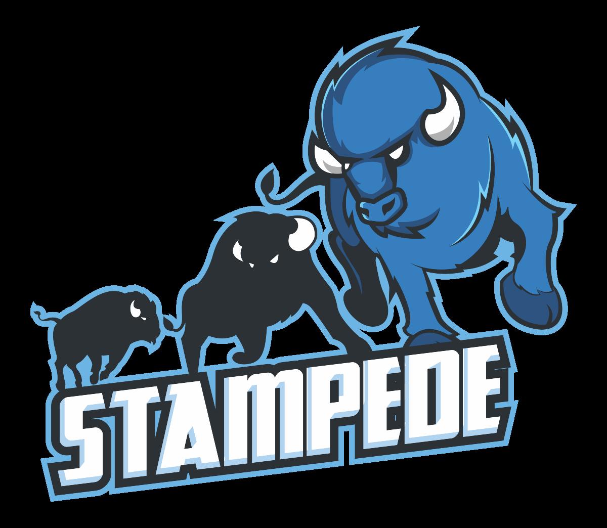 Design logo for a Team