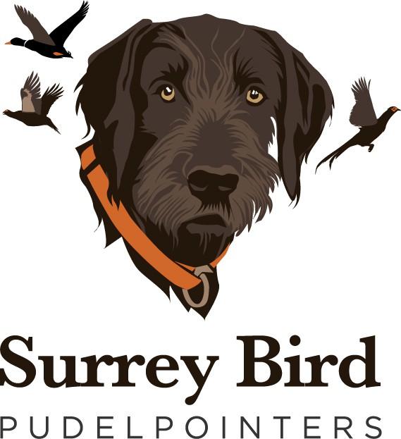 Design a logo for a breeder of family-oriented bird dogs