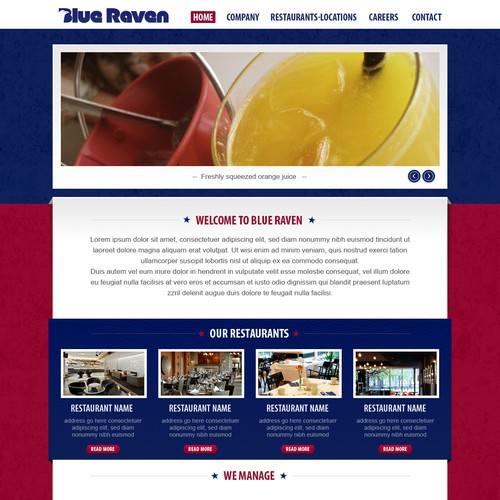 Help Blue Raven with a new website design