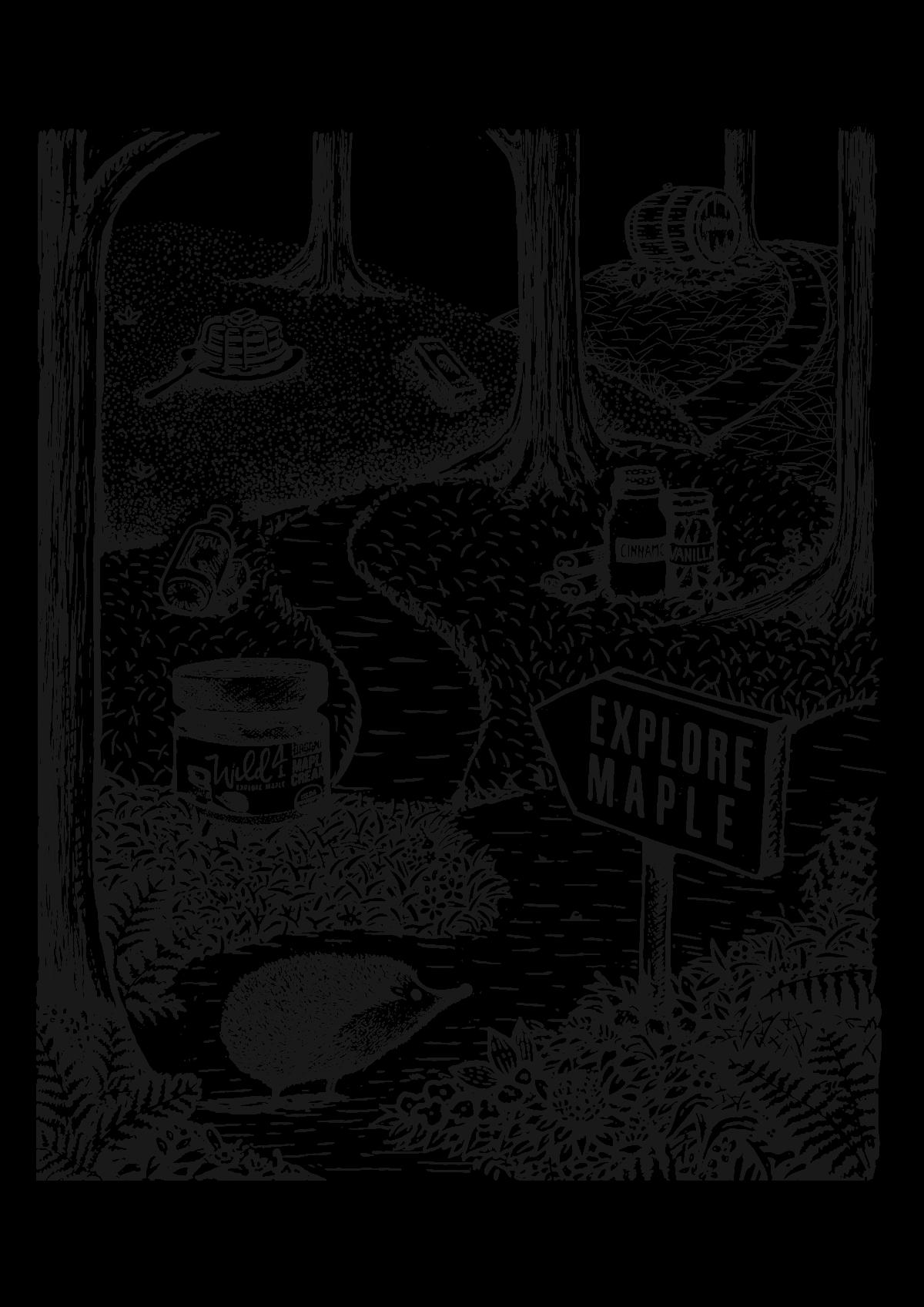 Illustration for Maple Candy SKU