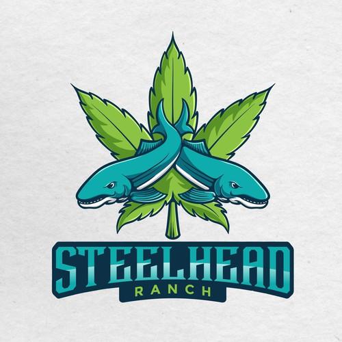Steelhead + Marijuana