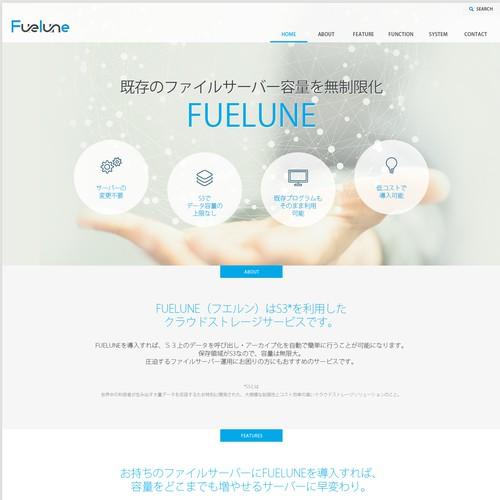 Web design for IT company