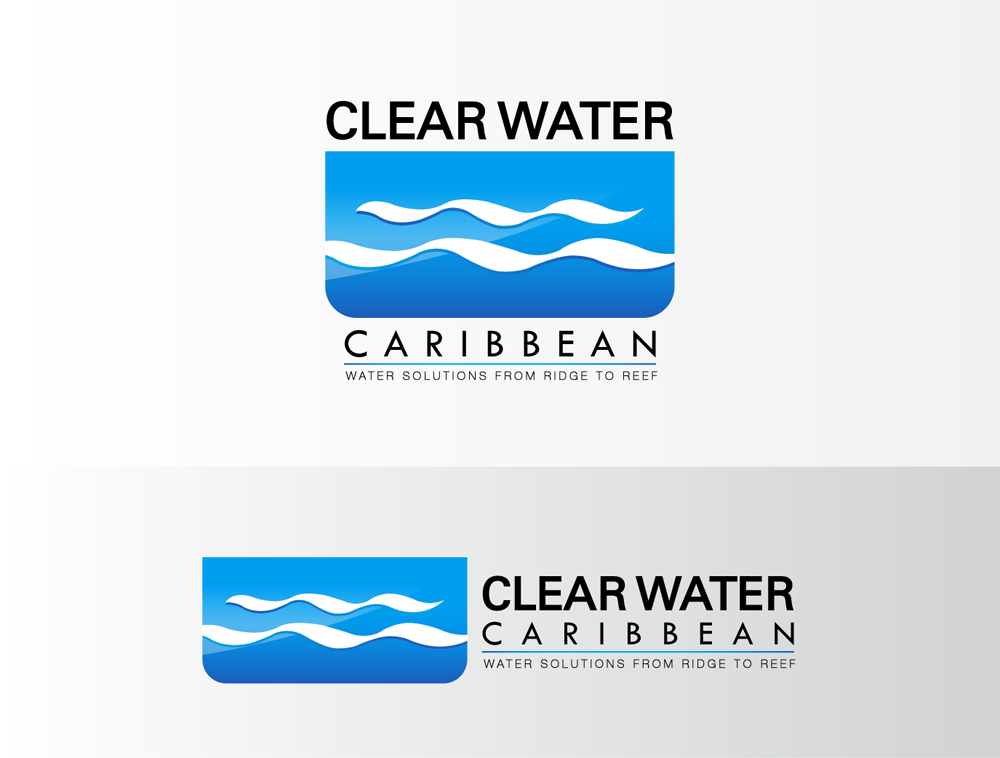 Help Clear Water Caribbean, Inc. with a new logo