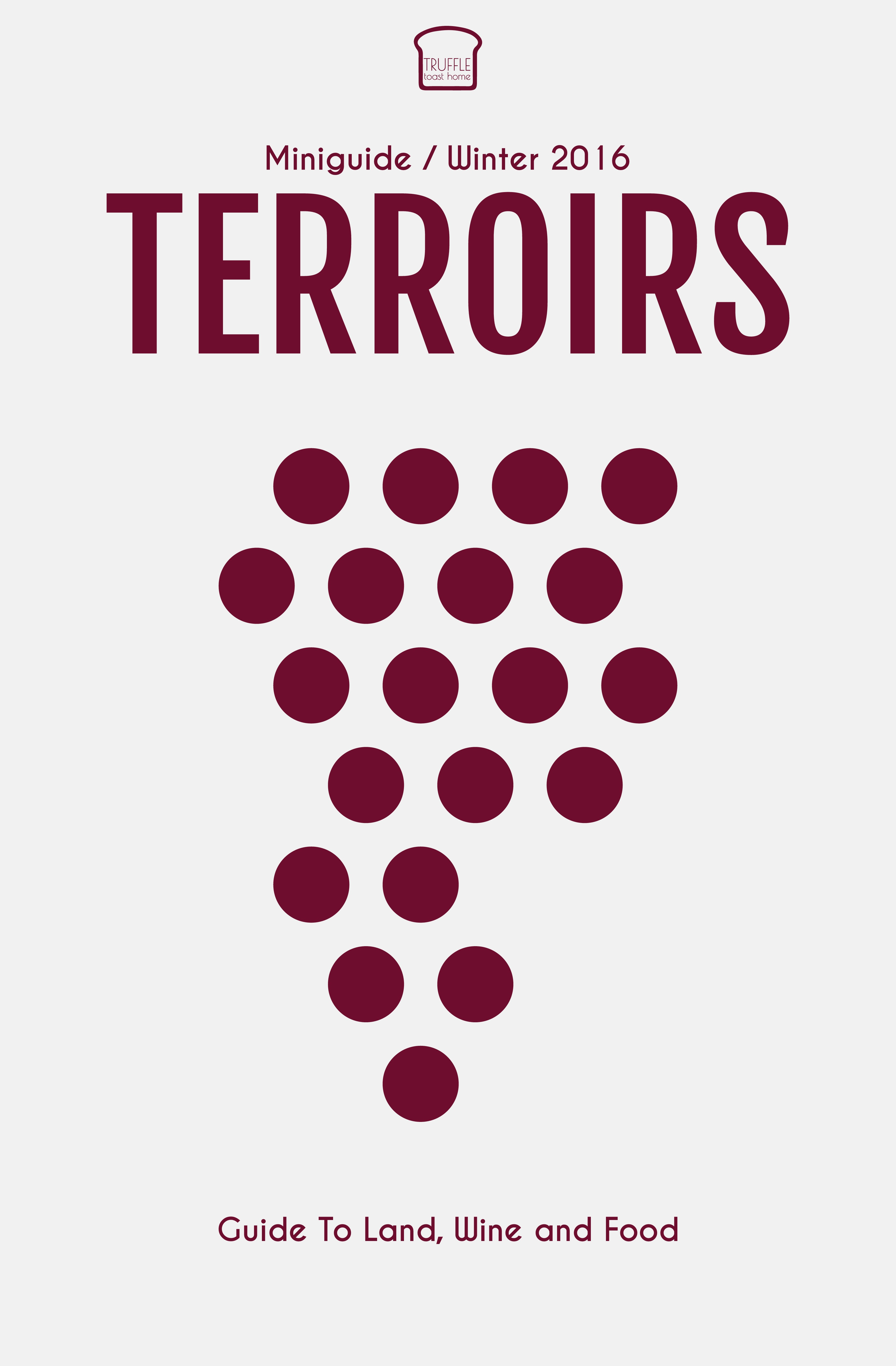 Modern eBook Cover for Wine and Food Website