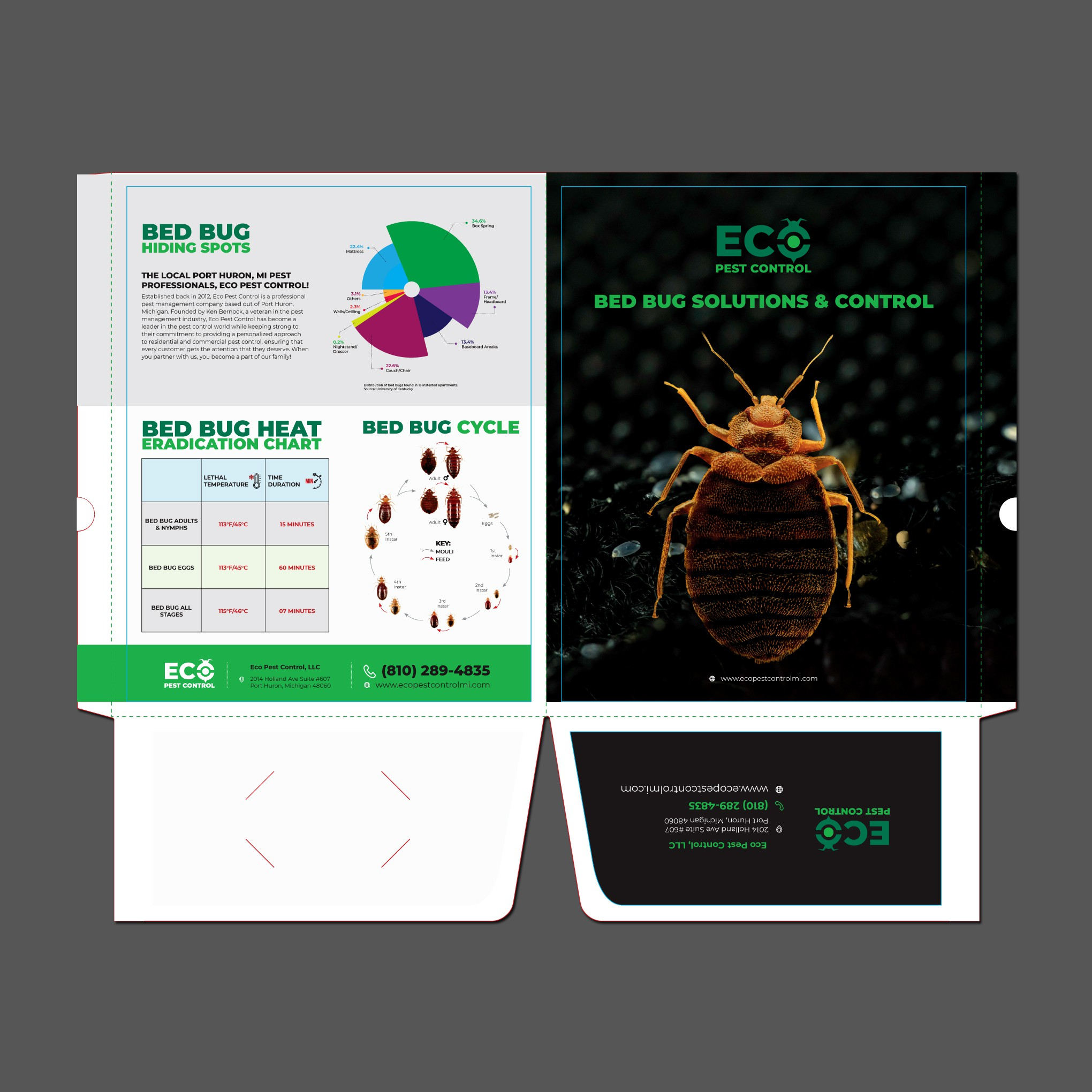 Designing a bed bug folder for a local pest control company