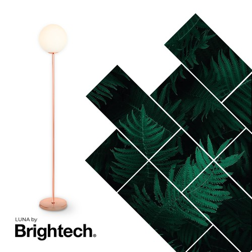Banner ad for Brightech