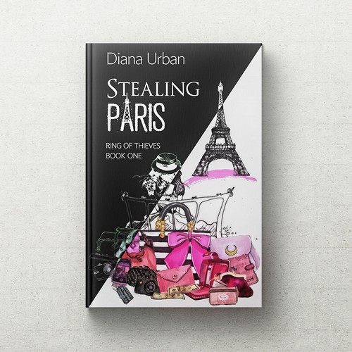 Stealing Paris Book Cover