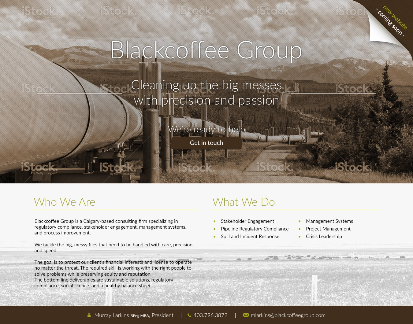 Create a bold landing page for oil and gas consultant