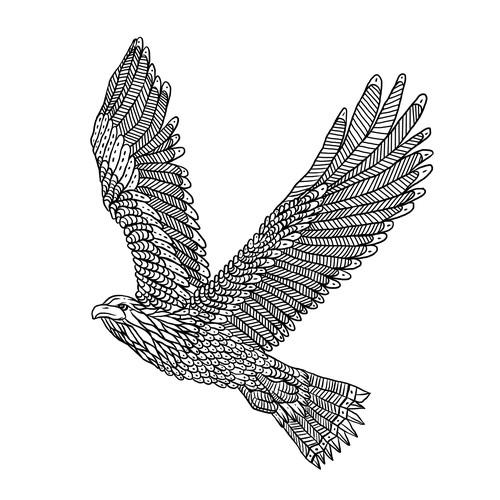 eagle/hawk traditional line art