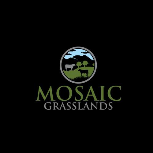 mosaic grasslands