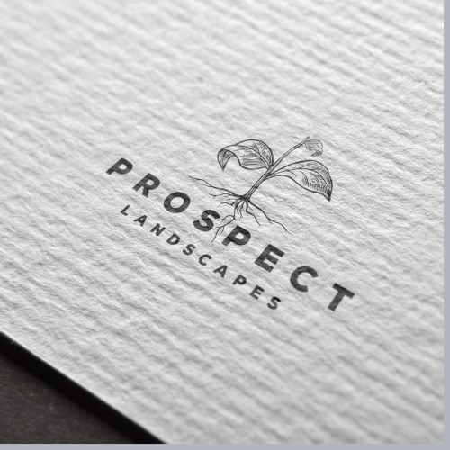 Logo Concept for Prospect Landscapes