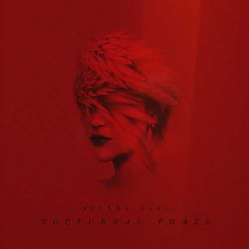 Nocturnal Phase's Album Artwork