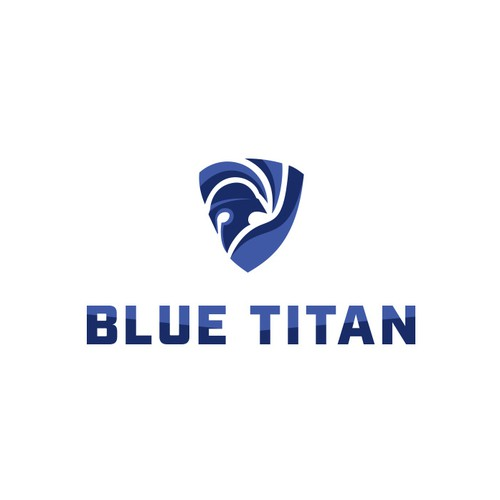 Blue Titan Crossfit & Krav Maga Gym