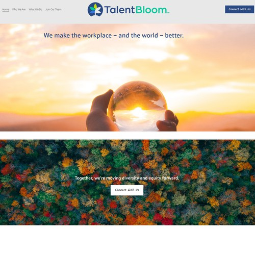 Website - Consulting Firm