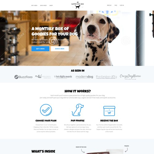 Home Page for The Dapper Dog Box