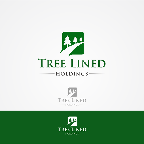 a professional and classic logo for a new investment company