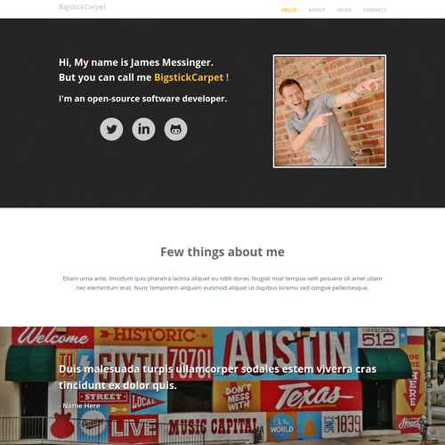 BigstickCarpet Website