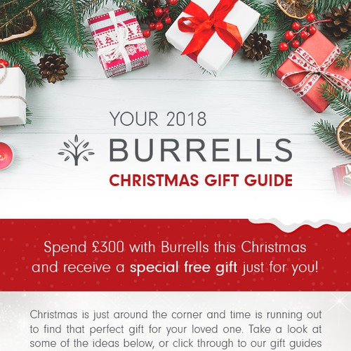 Burrells Christmas campaign - email