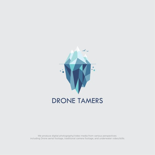 Drone Tamers