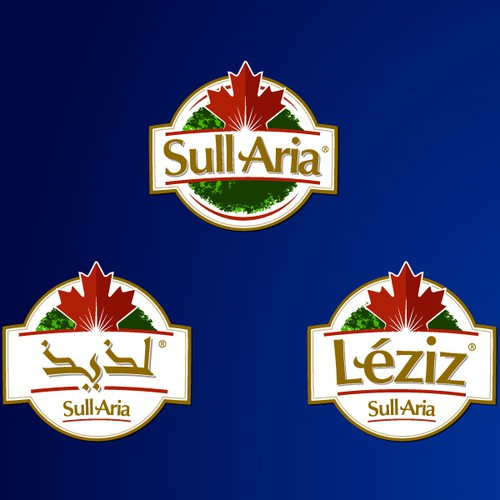 Create the next logo for Sull Aria