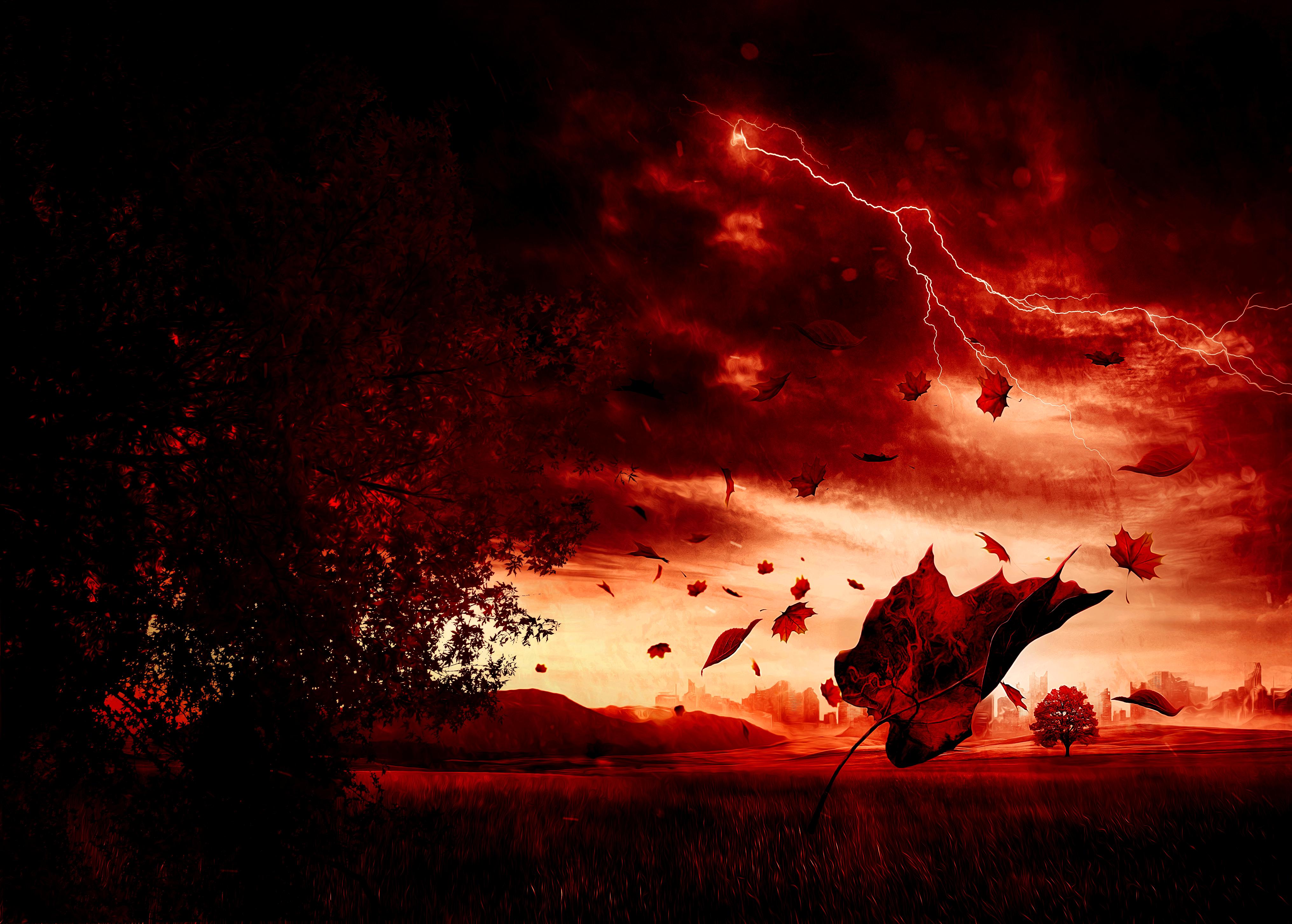 Cover design Första hösten - röd skymning