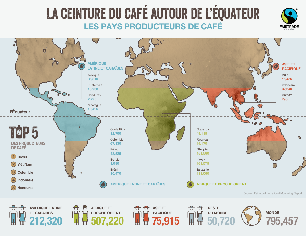 Coffee Belt Infographics