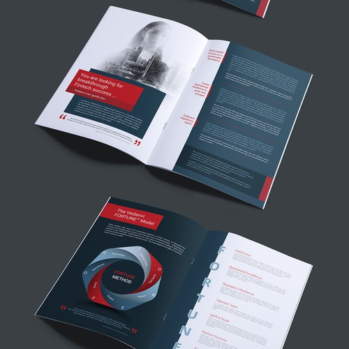 Finance brochure design