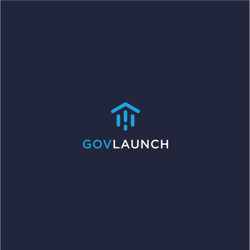 Flat Minimal Logo Design for Government Tech Network